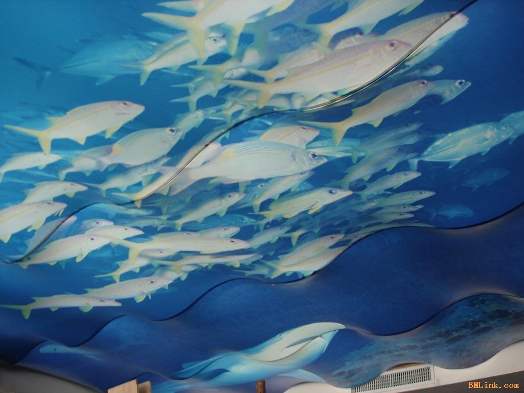 壁纸 海底 海底世界 海洋馆 水族馆 桌面 1037_778