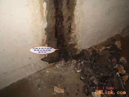供应电缆沟防水堵漏/长江隧道堵漏/地下室防水堵漏