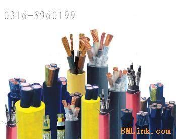 缆产品说明结构示意图JHS1KV JHS