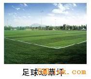 格林人造草坪单丝网丝足球草