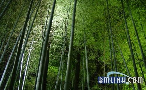 天时地利,国内竹木地板市场机遇显现