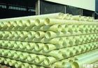 供应国内最大玻璃钢管