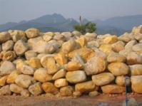 供应驳岸石/黄腊石