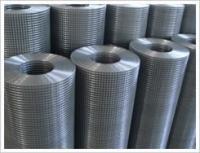 供应外墙保温热镀锌电焊网